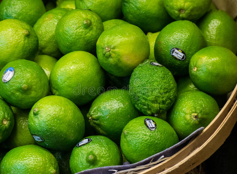 Basket Full of Limes royalty free stock images
