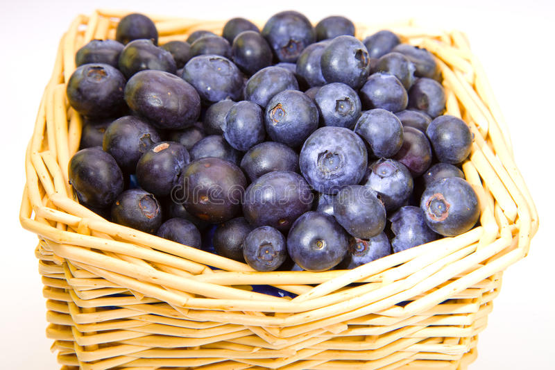 The basket full of a ripe bilberry royalty free stock photo