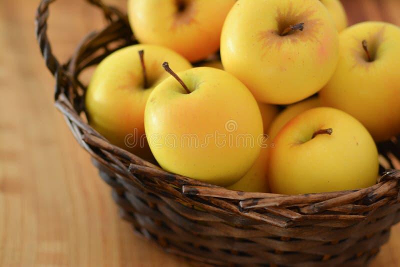 Basket of golden apples stock photos