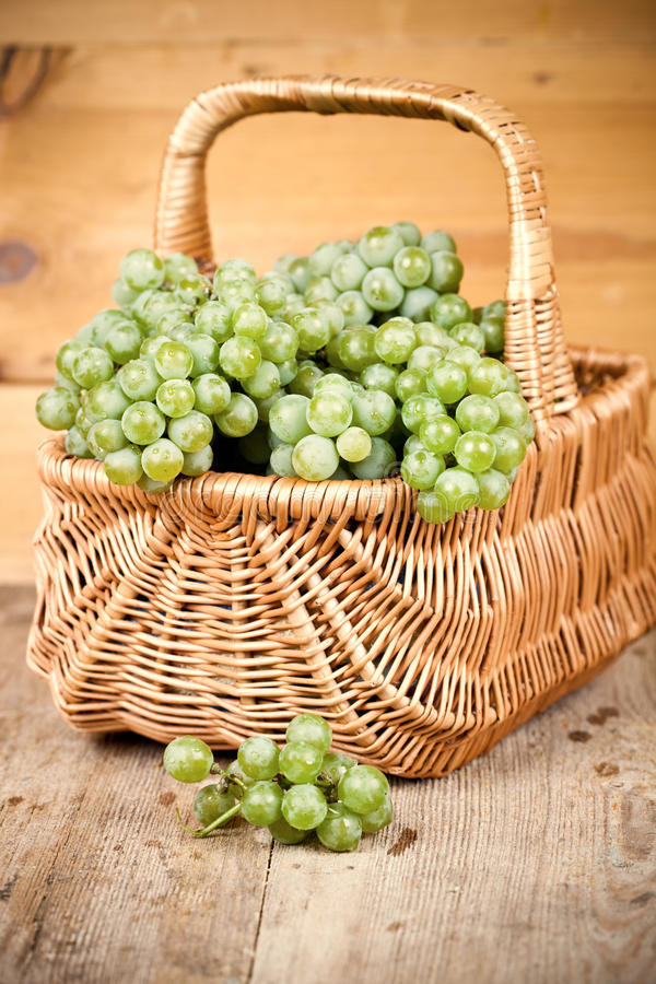 Download Basket with grapes stock image. Image of gardening, picnic - 26598483