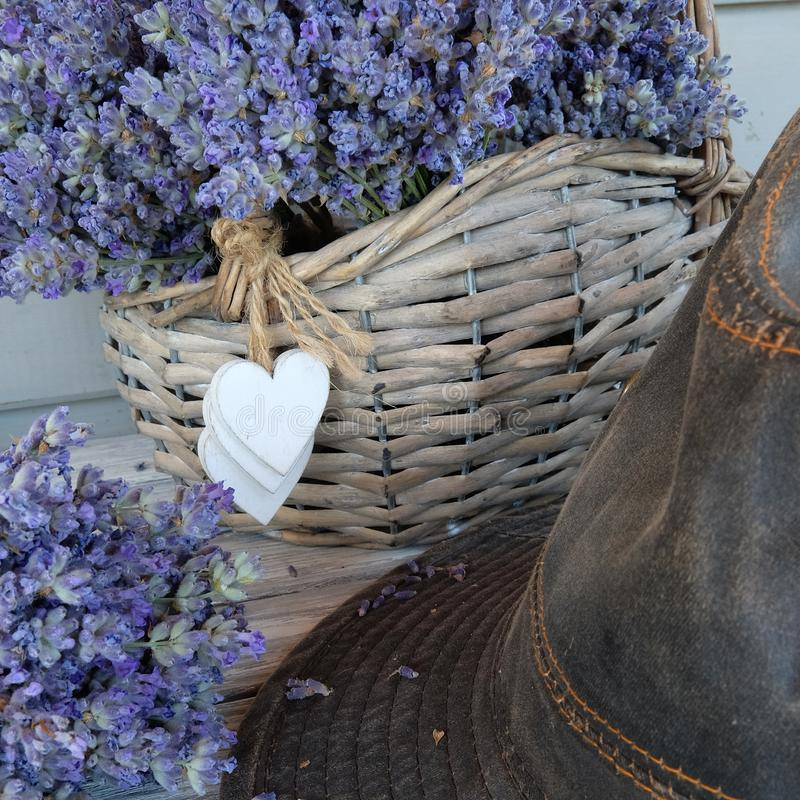 Basket with lavender and hat stock image