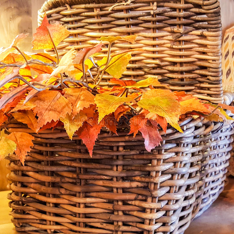 Basket of leaves royalty free stock photo