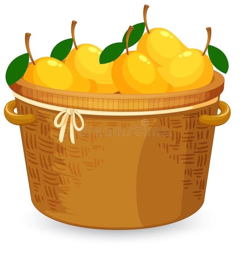 A basket of mango. Illustration stock illustration
