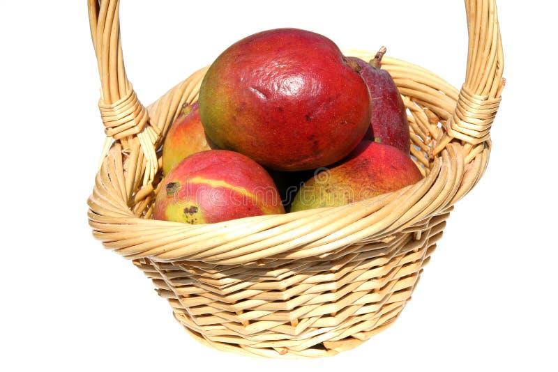 Basket Of Mangos Stock Photography