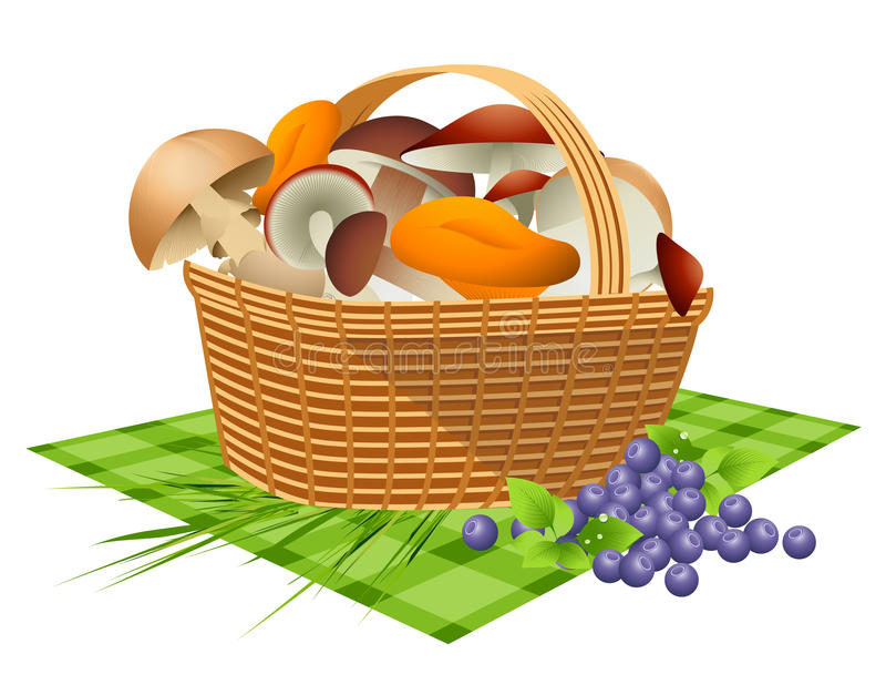 Basket with mushrooms vector illustration