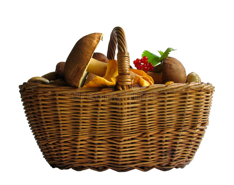 Download Basket With Mushrooms Royalty Free Stock Photo - Image: 521195