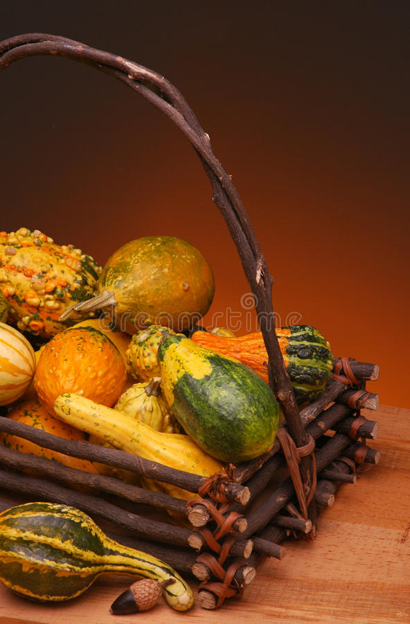 Free Basket Of Gourds Royalty Free Stock Photography - 30624567