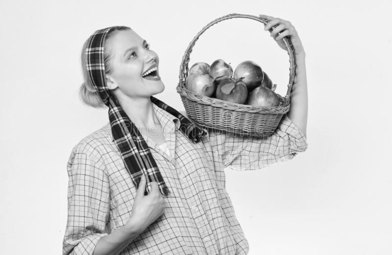 Basket of organic apples. vitamin and dieting food. farming concept. healthy teeth. orchard, gardener girl with apple. Basket. Happy woman eating apple. spring royalty free stock photography