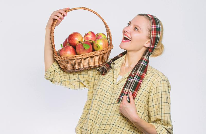 Basket of organic apples. vitamin and dieting food. farming concept. healthy teeth. orchard, gardener girl with apple. Basket. Happy woman eating apple. spring royalty free stock images