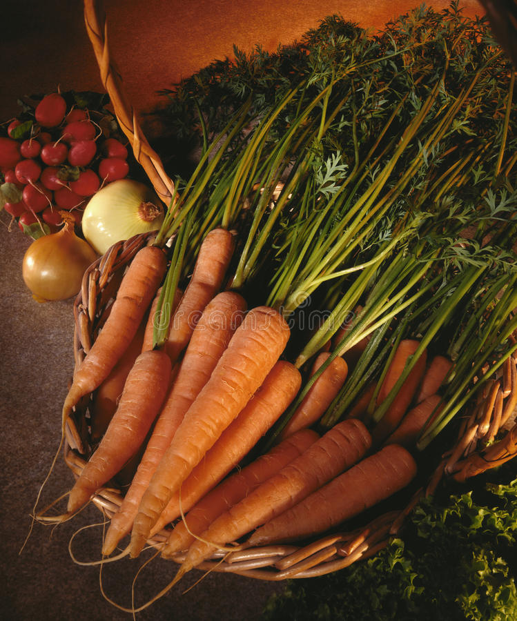 Basket of organic carrots