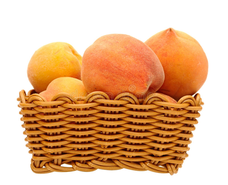 Download Basket of peaches stock image. Image of fragrant, apricot - 26519309