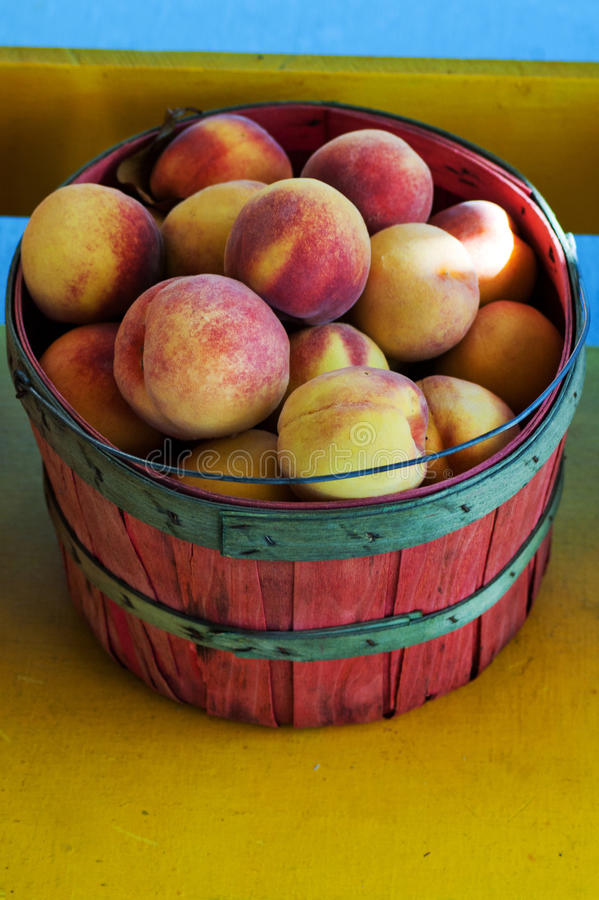 Download Basket of peaches stock image. Image of farming, peach - 28003427