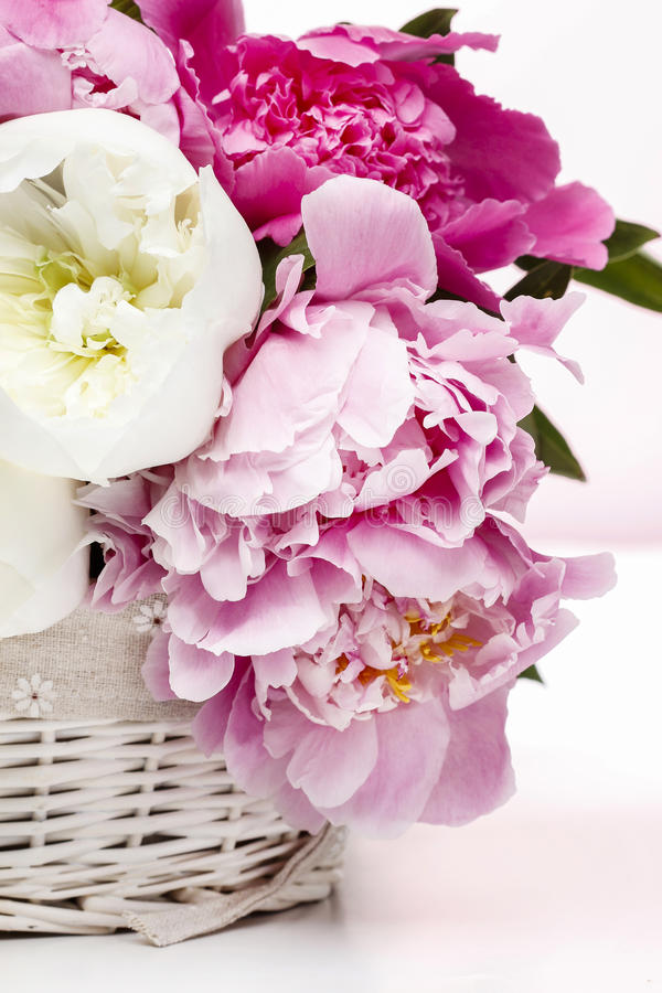 Download Basket of peonies stock photo. Image of decorative, decoration - 38798138