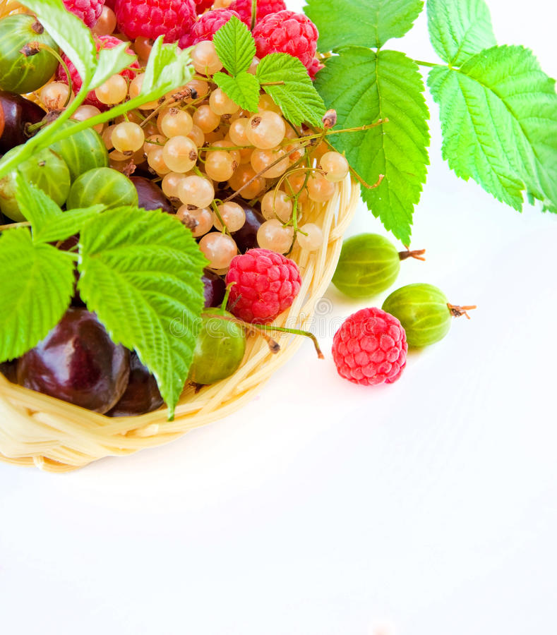 Download Basket With A Raspberry, A Cherry And A Gooseberry Stock Image - Image: 20456351