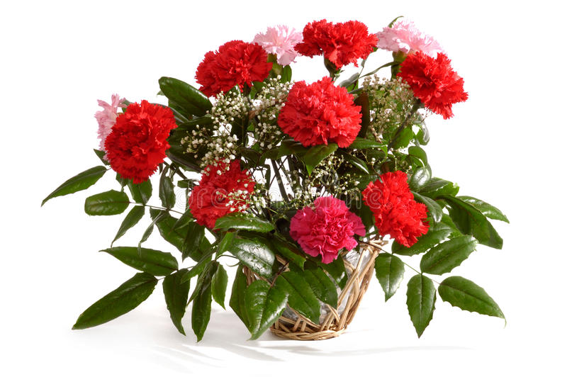 Basket With Red Carnations Royalty Free Stock Images