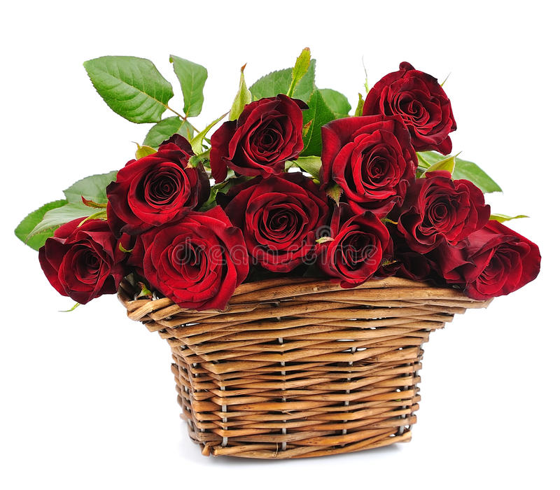 Download Basket red roses stock image. Image of isolated, flower - 24984533