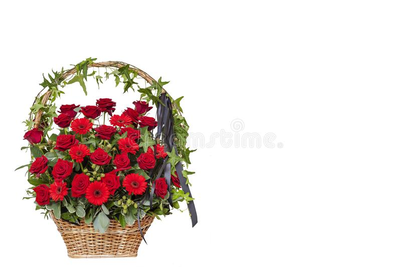 Basket with red roses with black ribbon. Funeral wreath, postcard. Isolated on a white background stock image