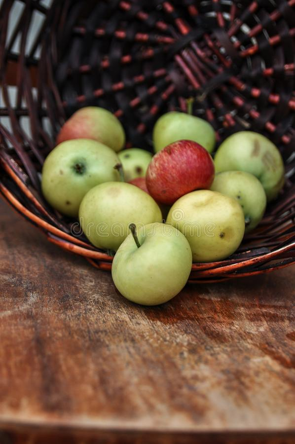 Basket with ripe fresh apples on an old chair. Harvest royalty free stock image