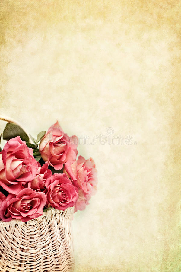 Basket of Roses. Basket of pink long stem roses with copy space available royalty free stock images