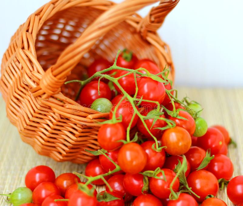 Small red cherry tomatoes in a wicker basket in a rustic style royalty free stock images