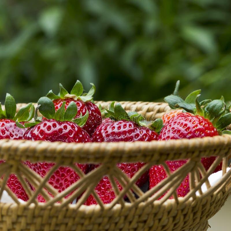 Basket Strawberries green stock photo