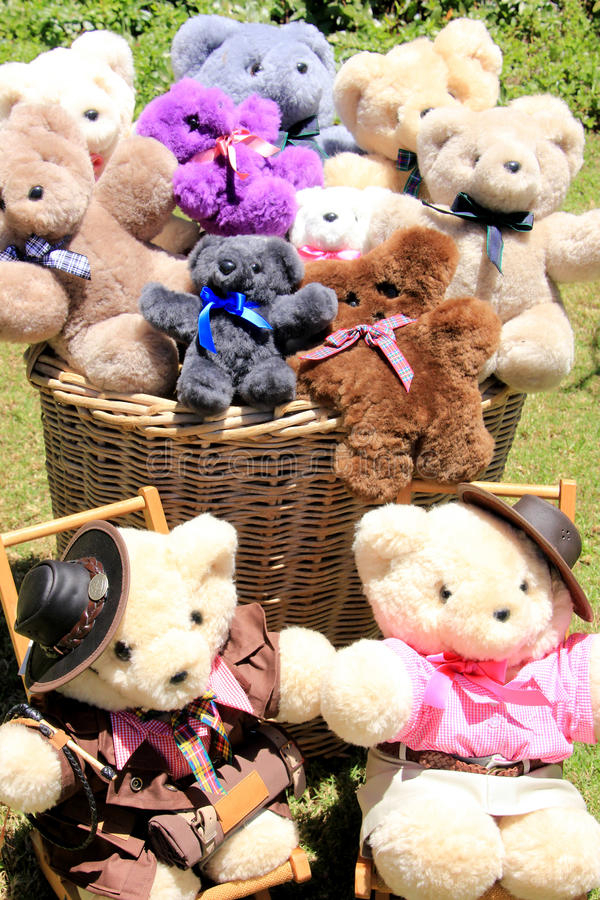 Basket with Teddies. Teddies with hats sitting in chair and in basket stock image