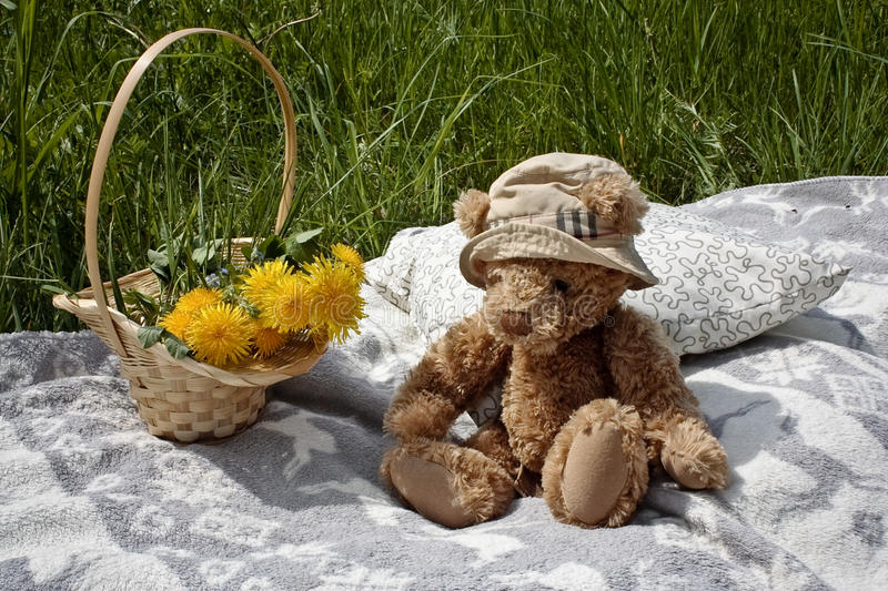 Basket and teddy bear on a blanket stock image