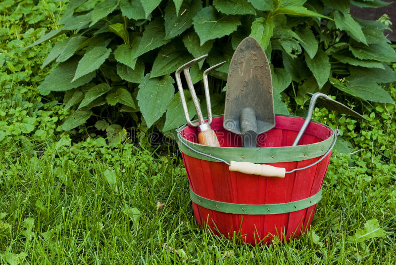 Download Basket and tools stock image. Image of leisure, garden - 25451161