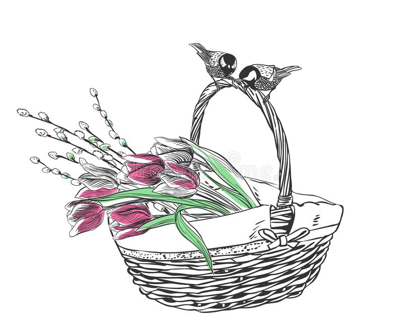 Basket tulips flower vector engrave card isolated vector illustration