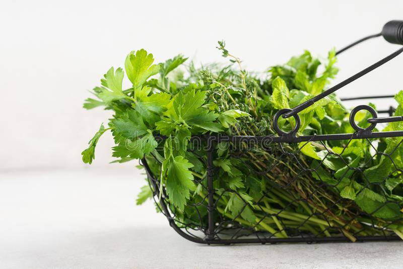 Basket with a variety of fresh green culinary herbs royalty free stock photography