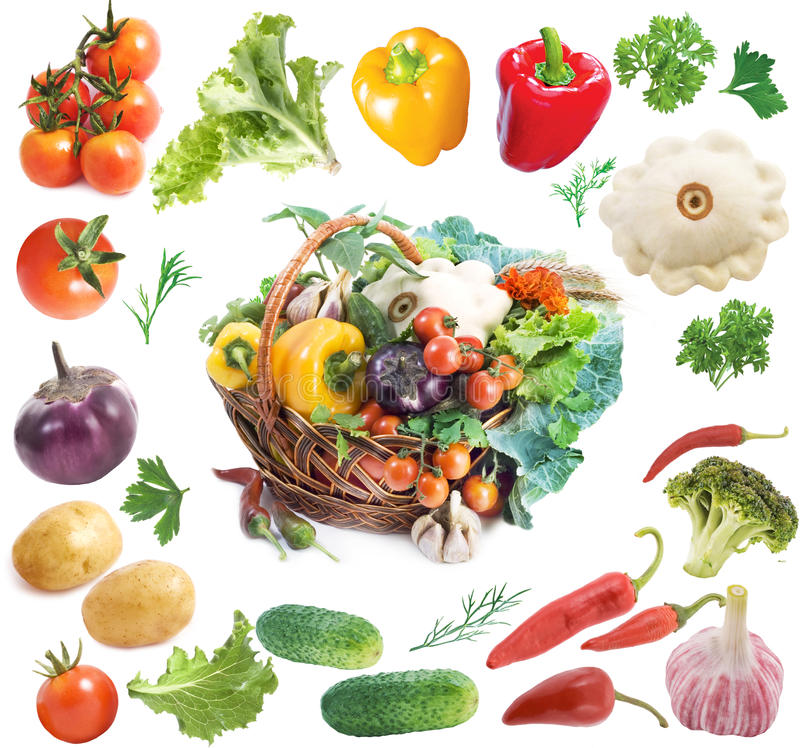 Download Basket with vegetables stock image. Image of organic - 10141399