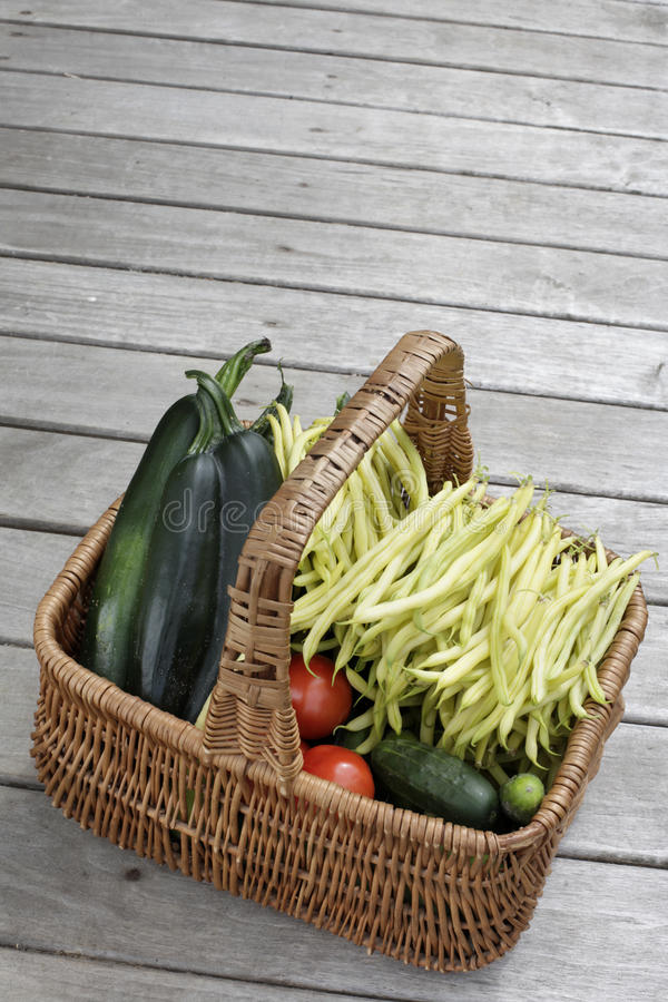 Download Basket with vegetables stock image. Image of zucchini - 25828269