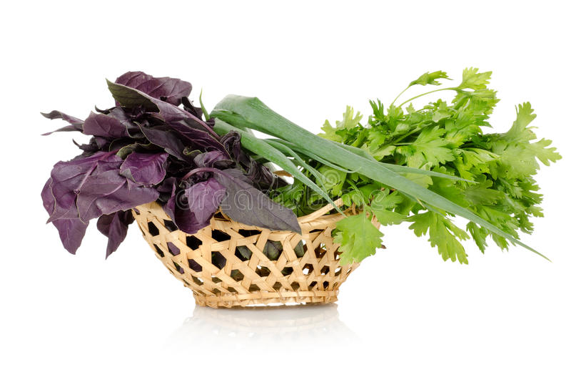 Download Basket of vegetables stock photo. Image of basil, vegetable - 26134984