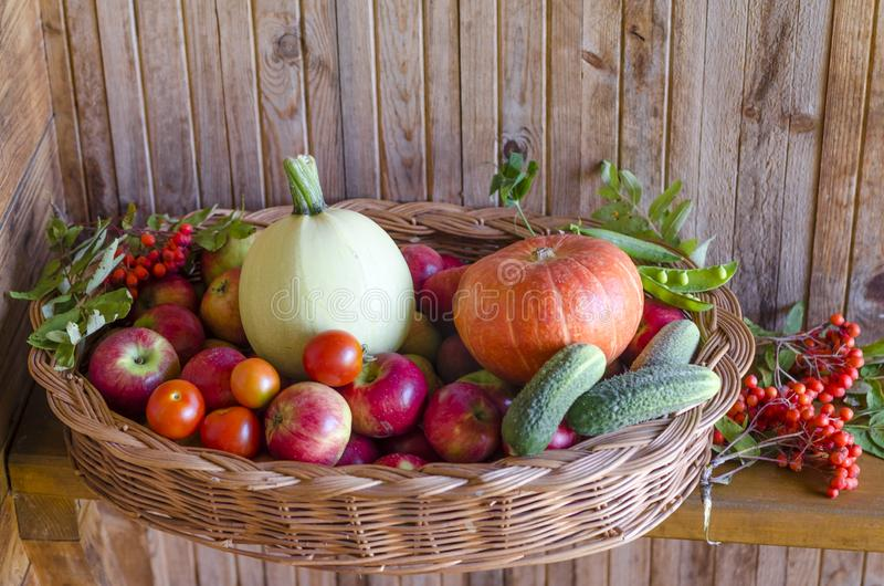 basket with vegetables and fruits on a wooden background. harvesting autumn and summer harvest. pumpkin, zucchini, apple stock images