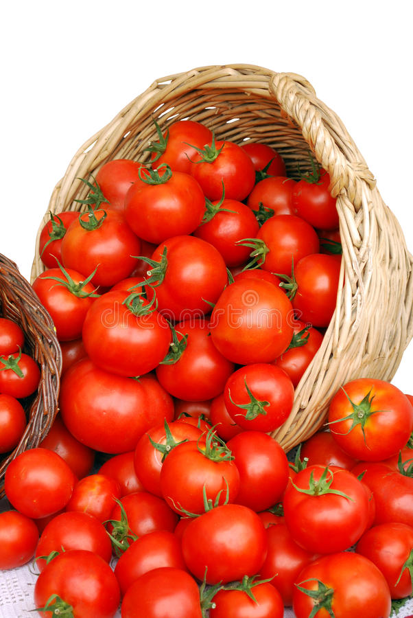Free Basket With Tomatoes Royalty Free Stock Image - 10021396