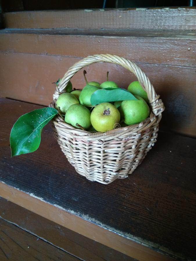 Basket with young green pears on wooden surface royalty free stock image