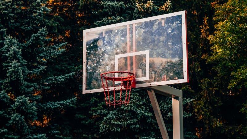 Basketbalhof in het midden van een dik donker bos royalty-vrije stock afbeelding