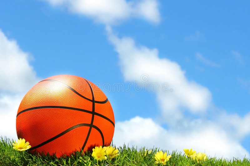 Basketball on the grass royalty free stock photos