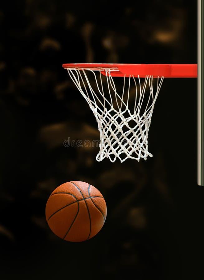 Free Basketball Hoop Royalty Free Stock Photos - 13559308