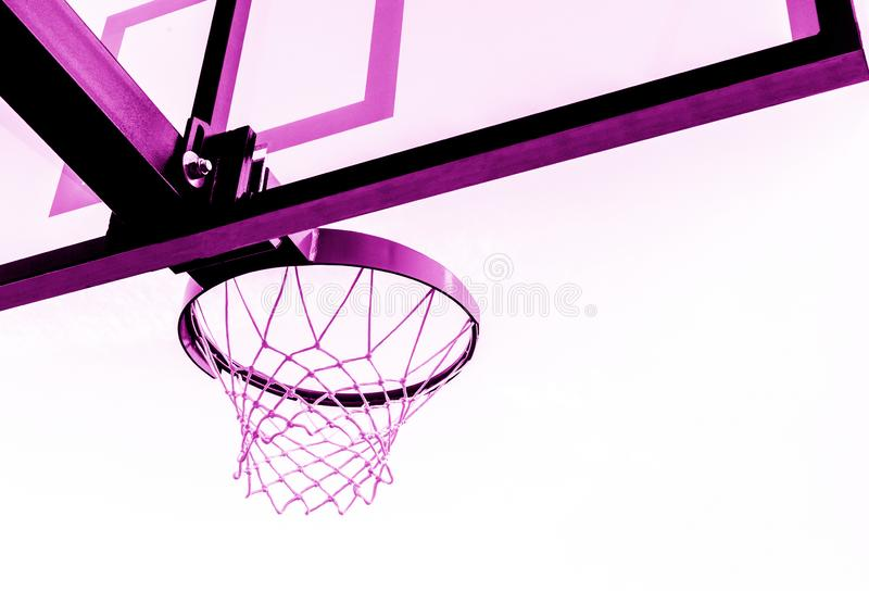 Basketball hoop isolated on white background. Pink filter stock photo