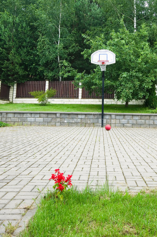 Download Basketball hoop summer stock photo. Image of tree, play - 25537902