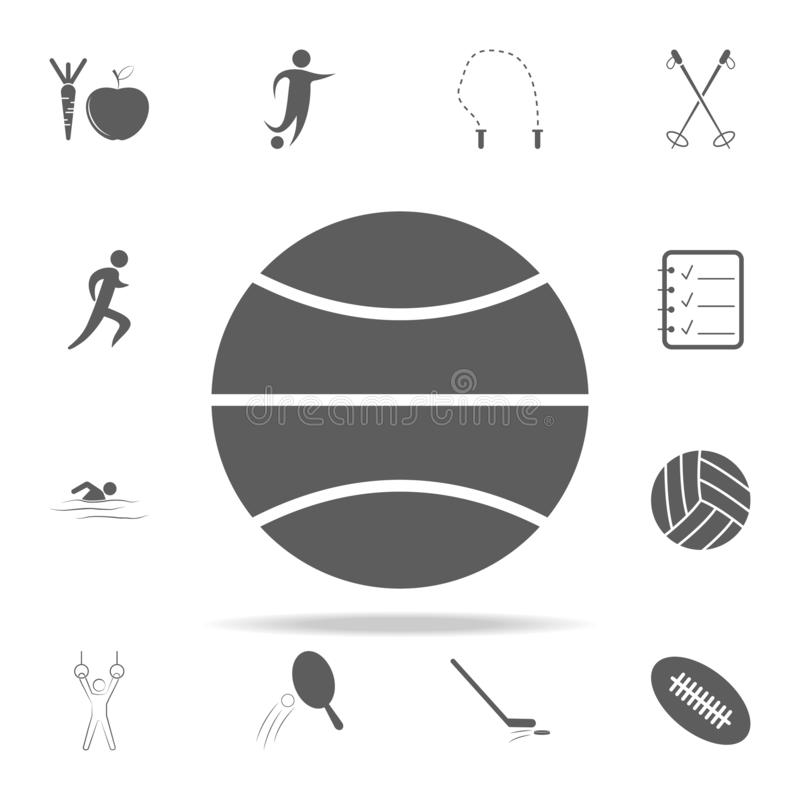 Basketball icon. Sport icons universal set for web and mobile. On white background stock illustration