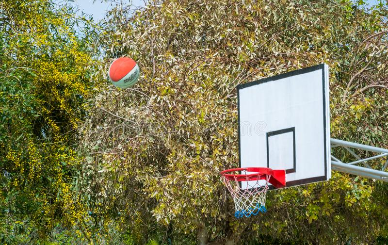 Basketbollen flyger in i målet royaltyfria bilder