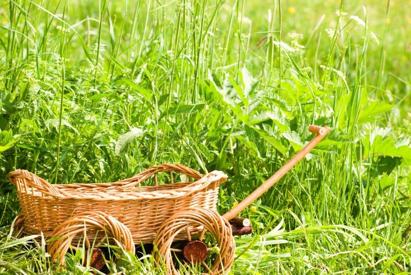 Basketry na natureza fotografia de stock