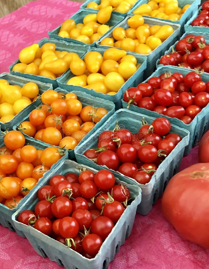 Baskets of cherry tomatoes for sale at farmers market stock images