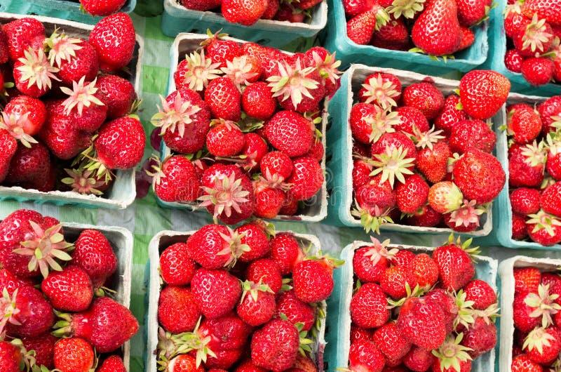 Baskets of fresh ripe strawberries stock photo