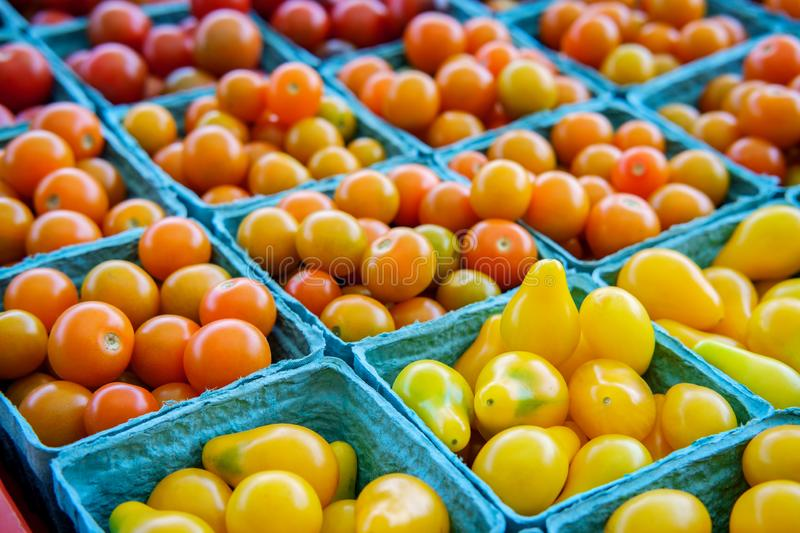 Baskets Grape Tomatoes royalty free stock photos