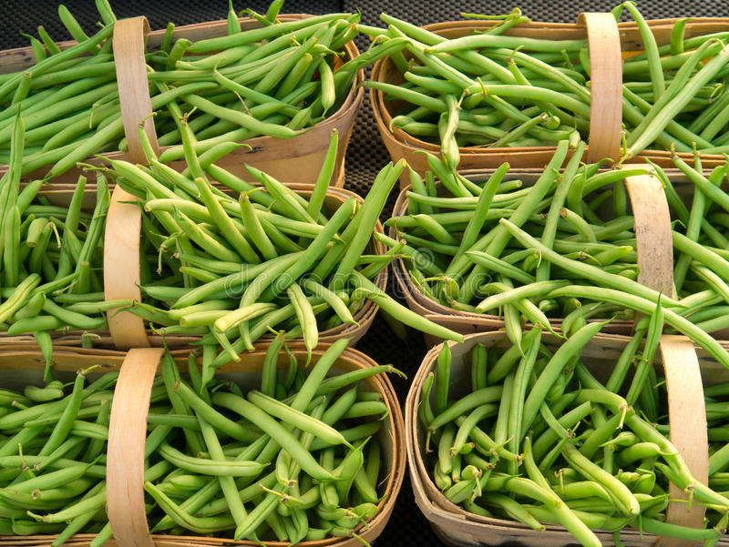 Baskets of green beans royalty free stock image