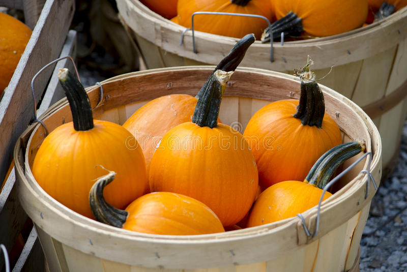 Baskets of pumpkins stock image
