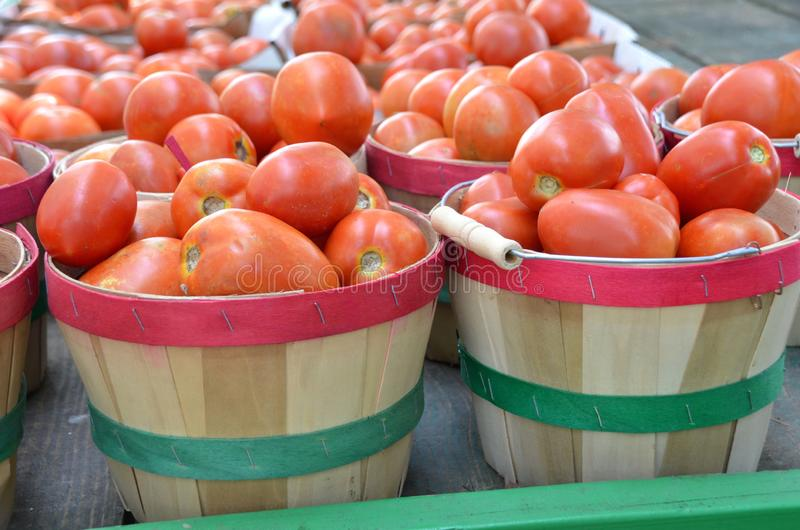 Baskets of Tomatoes royalty free stock photos